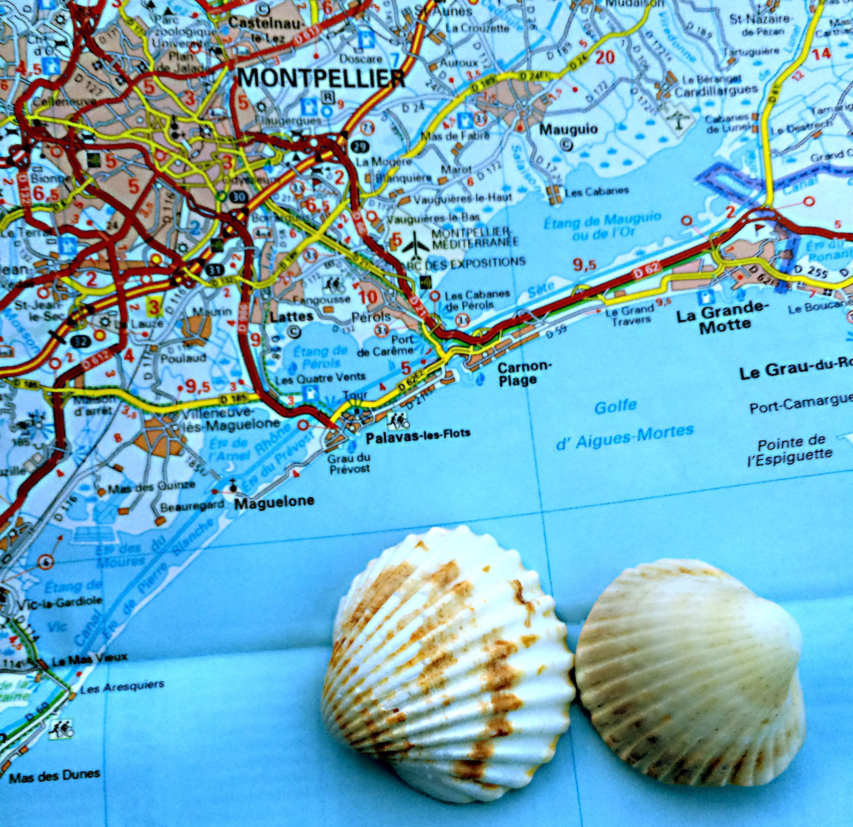 10 Things To Do in Montpellier France GoTravelGlobal