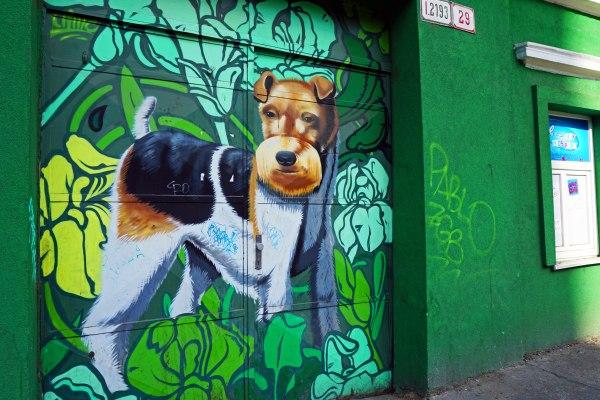Travel Blog: Dog graffiti in Bratislava
