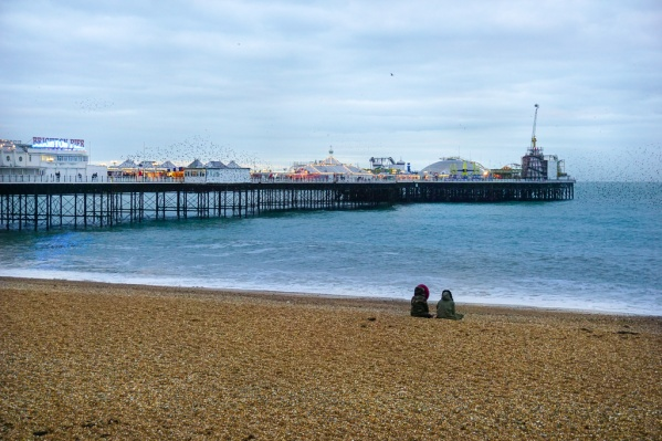 travel to Brighton pier